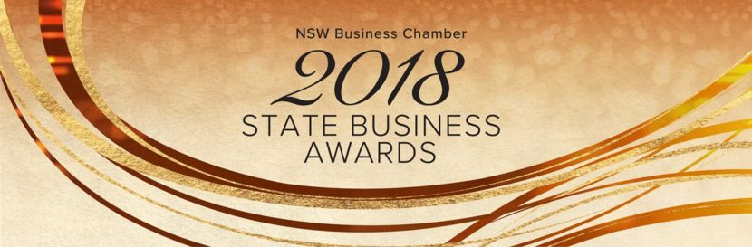 Bounce-Rubber Bands_NSW-Business-Awards_ Business Awards_Excellence-Small-Business